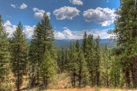 Home for sale: Lot 1 Four Pines Rd., Idaho City, ID 83631