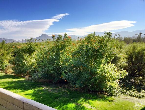 153 Camino Arroyo South, Palm Desert, CA 92260 Photo 12