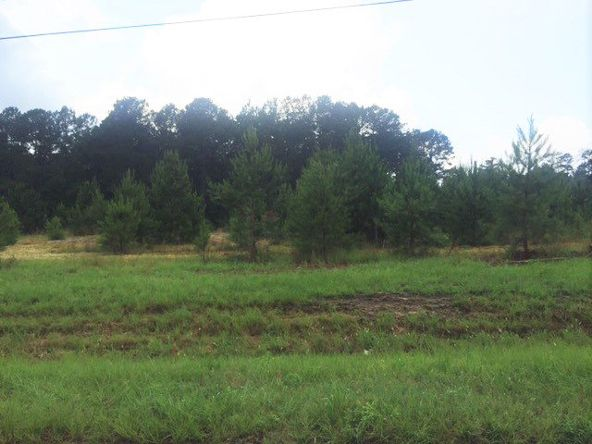 4 Ac Point A Rd. (Cr 59), Andalusia, AL 36421 Photo 6