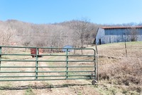 Home for sale: 2899 Saltlick Rd., Vanceburg, KY 41179