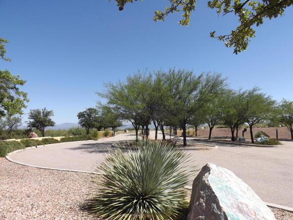 1237 W. Scarlet Blossom, Benson, AZ 85602 Photo 8