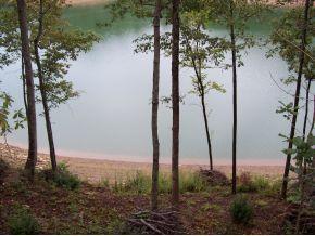 50 County Rd. 309, Crane Hill, AL 35053 Photo 5