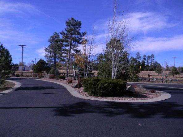 5333 E. N. Elk Springs, Lakeside, AZ 85929 Photo 6
