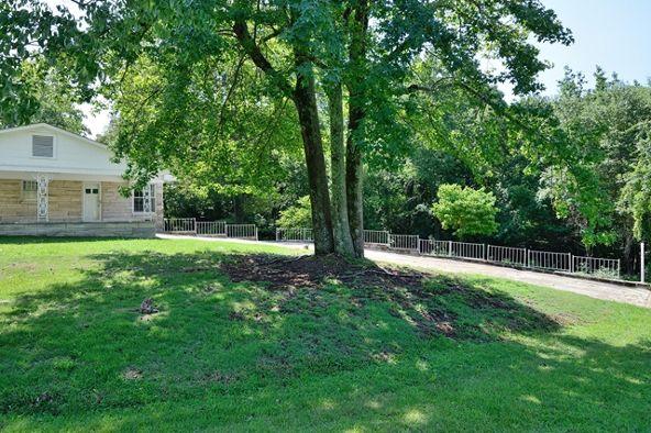 241 Pine St., Russellville, AL 35653 Photo 23