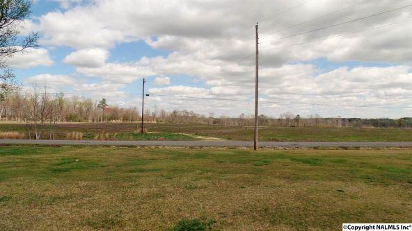 547 County Rd. 550, Grove Oak, AL 35975 Photo 23