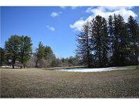 Home for sale: 0 Mountain Ln., Farmington, CT 06032