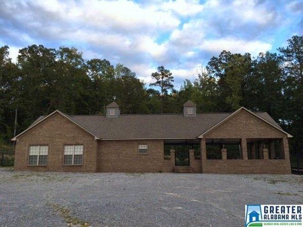 380 Gray Fox Rd., Springville, AL 35146 Photo 6