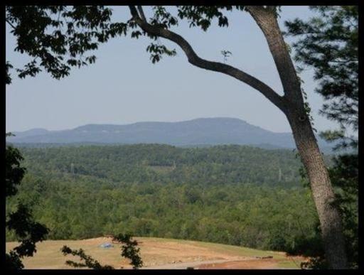 The Preserve At Clinch River, Oak Ridge, TN 37830 Photo 26