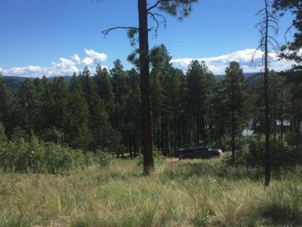 22 Cr 2074, Alpine, AZ 85920 Photo 24