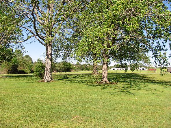 1887 County Rd. 49, Dawson, AL 35963 Photo 6