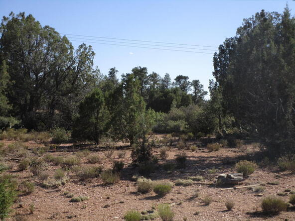 13818 N. Grey Bears Trail, Prescott, AZ 86305 Photo 6