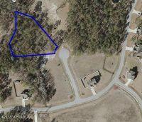 Home for sale: 307 Joans Ridge, Stella, NC 28582