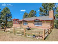 Home for sale: 203 Piney Point Ln., Woodland Park, CO 80863