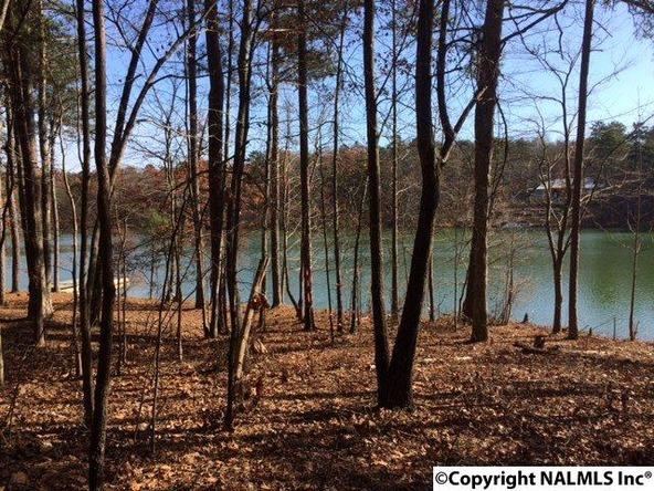 42 County Rd. 103, Mentone, AL 35984 Photo 3