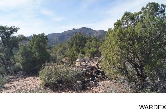 9999 N. Trap Springs Rd., Hackberry, AZ 86411 Photo 4