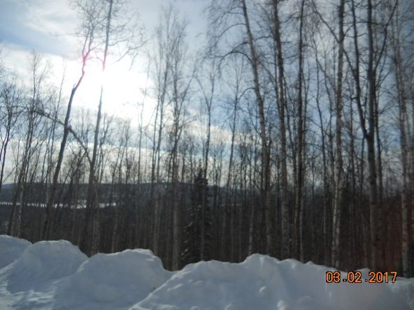 207 Eagle Ridge Rd., Fairbanks, AK 99712 Photo 6