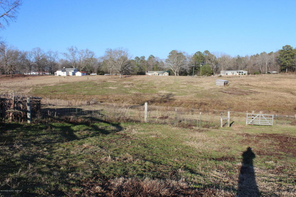 3601 Brookside Rd., Brilliant, AL 35548 Photo 7
