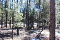 Home for sale: 000 Christy Way, Alpine, AZ 85920