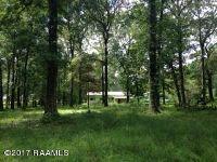 Home for sale: 2024 B L Ferguson, Ville Platte, LA 70586