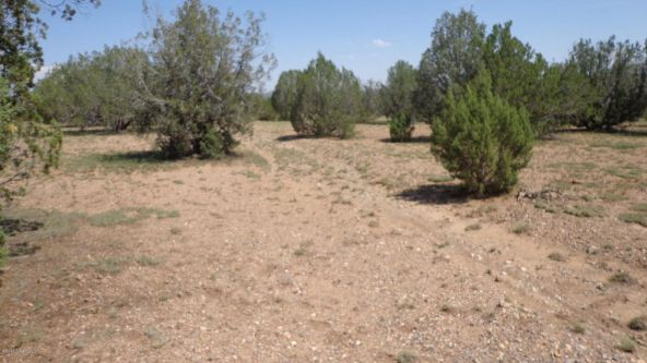 261 Juniperwood Ranch Lot 261, Ash Fork, AZ 86320 Photo 3