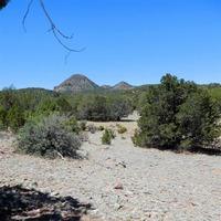Home for sale: 0000 Hakuna Matata Rd., Williams, AZ 86046