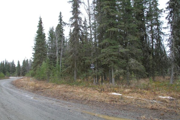 47465 Augusta National Rd., Kenai, AK 99611 Photo 13