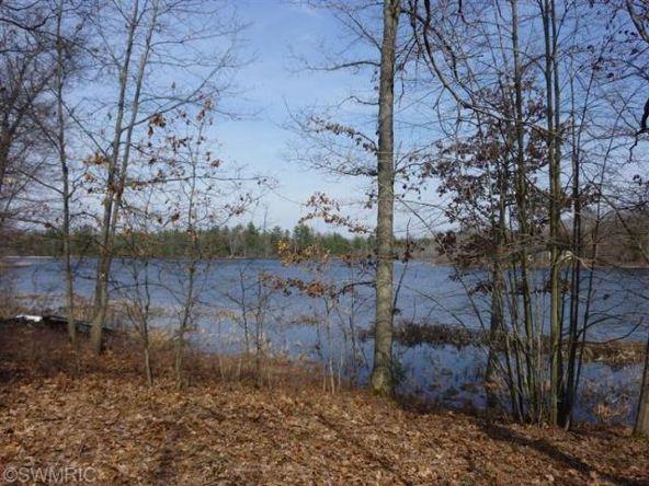 10738 Beaver Trail, Bitely, MI 49309 Photo 1