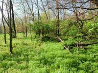 Home for sale: 07 Old State Rd. 65, Owensville, IN 47665