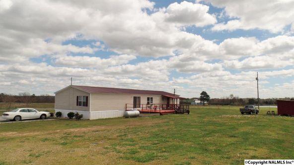 547 County Rd. 550, Grove Oak, AL 35975 Photo 13