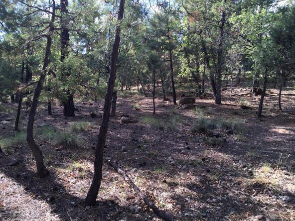 4826 Blue Spruce Ln., Lakeside, AZ 85929 Photo 4