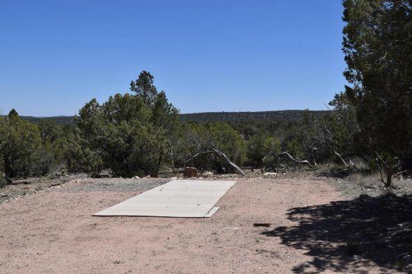 487 Sierra Verde Ranch, Seligman, AZ 86337 Photo 20