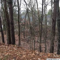 Home for sale: South St., Huntsville, AL 35803