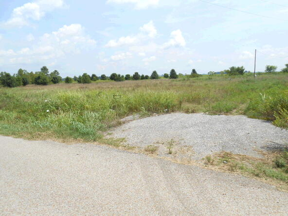 3.33 Acres Cr 945, Jonesboro, AR 72401 Photo 8
