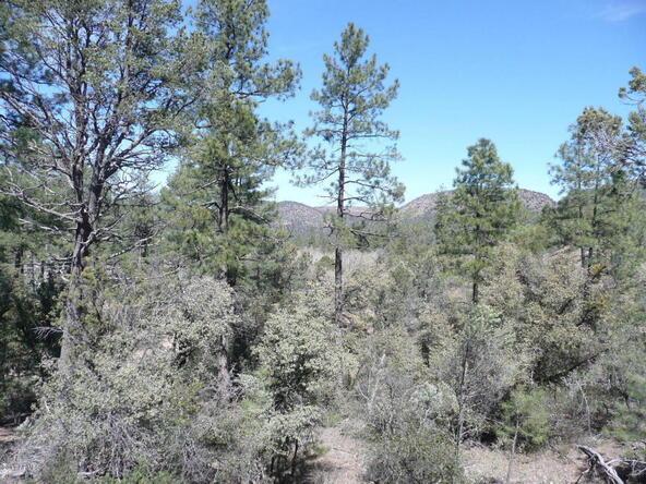 8b N. Chamberlain Trail, Young, AZ 85554 Photo 4