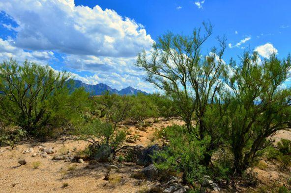 14601 N. Quiet Rain Dr., Oro Valley, AZ 85755 Photo 9