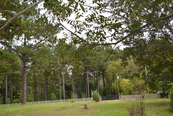 1723 Omussee, Dothan, AL 36303 Photo 21