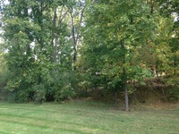 Home for sale: Lot 16 Hickory Valley Rd., Milford, MI 48380