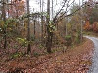 Home for sale: Lot 85 Pelican Ln., Lake Lure, NC 28746
