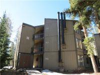 Home for sale: 1155 Ski Hill Rd., Breckenridge, CO 80424