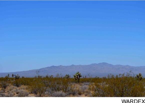 239 S. Tortoise Rd., Yucca, AZ 86438 Photo 3