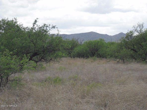 16005 Ranger Rd., Arivaca, AZ 85601 Photo 4