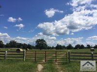Home for sale: 88 Elton Stewart Rd., Carlton, GA 30627