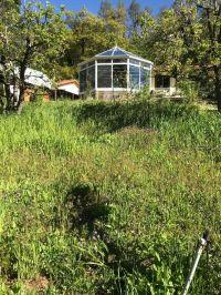 Home for sale: 4480 Mushroom Ln., Platina, CA 96076