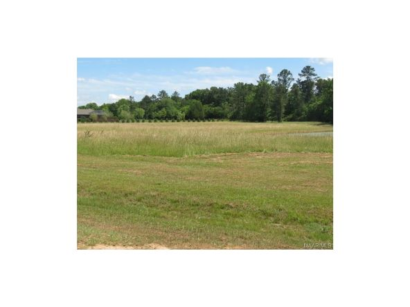1a Vaughn Crossing Rd., Pike Road, AL 36064 Photo 7