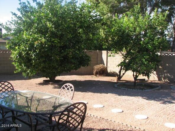 3816 N. 87th Way, Scottsdale, AZ 85251 Photo 23