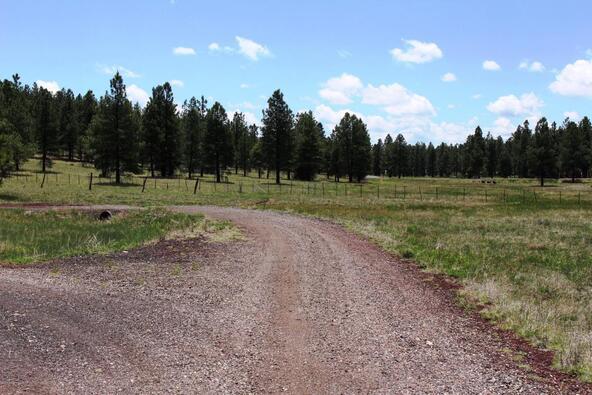 3252 N. Chickadee Trail, Flagstaff, AZ 86001 Photo 3