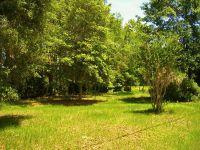 Home for sale: Lot 24 Plantation Dr. N.E., Townsend, GA 31331