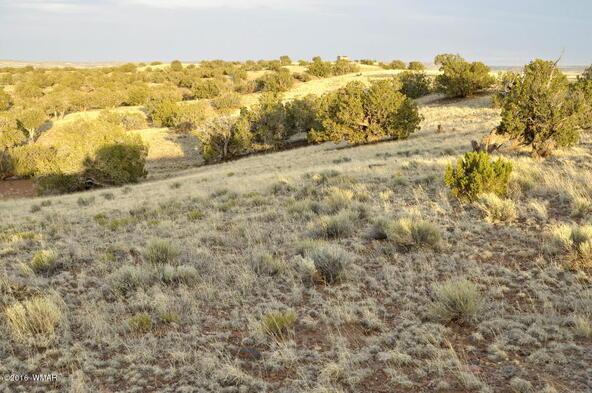 297 Woodridge Ranch, Concho, AZ 85924 Photo 3