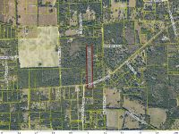 Home for sale: 0000 Vacant Land North Side Of Cr 18, Fort White, FL 32038