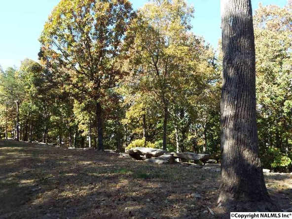11 S. County Rd. 89, Mentone, AL 35984 Photo 7